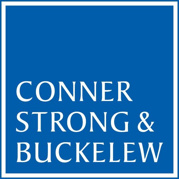 CS Business Descr. logo 286PMS-2